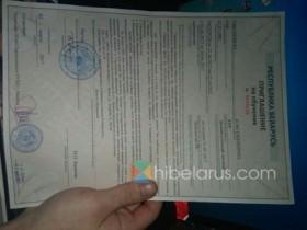 问:留学白俄罗斯什么开始时候准备文件?要带什么东西?