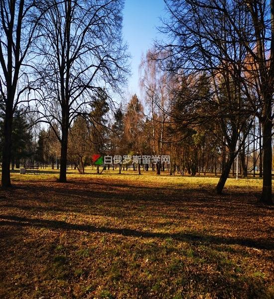 白俄罗斯疫情3月30日最新情况 留学生领取爱心包